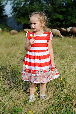 Little girl on a farm - p1412m2125651 by Svetlana Shemeleva