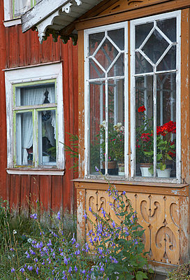 Close-up of a window, Sweden - p3486126 by Pierre Rosberg