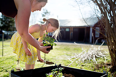 Mother with daughter gardening - p312m1495870 by Fredrik Ludvigsson