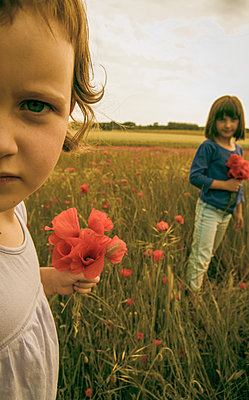 Oh ! Coquelicots - p1402m1538027 by Jerome Paressant