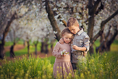 Loving siblings standing amidst plants on field at orchard - p1166m2024787 by Cavan Images