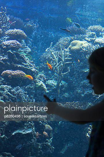 Aquarium - p8280498 von souslesarbres