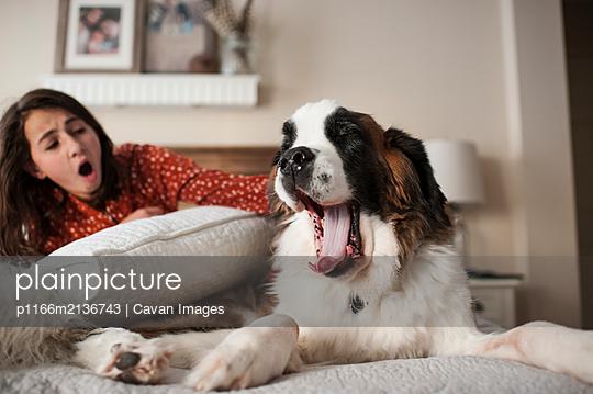 p1166m2136743 von Cavan Images
