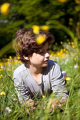 Junge liegt auf Blumenwiese - p1195m1138112 von Kathrin Brunnhofer