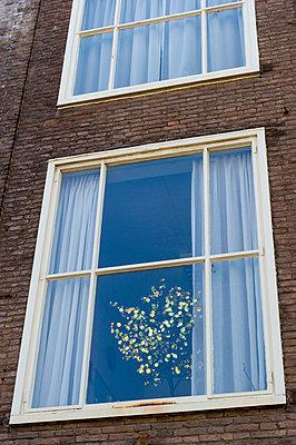 Oostkapelle, Zeeland - p949m929344 von Frauke Schumann