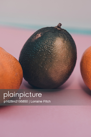 Lemon and Lime - p1628m2195850 by Lorraine Fitch