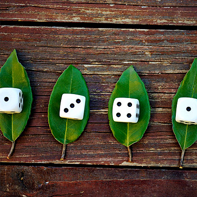 Würfel auf Blättern - p8290024 von Régis Domergue