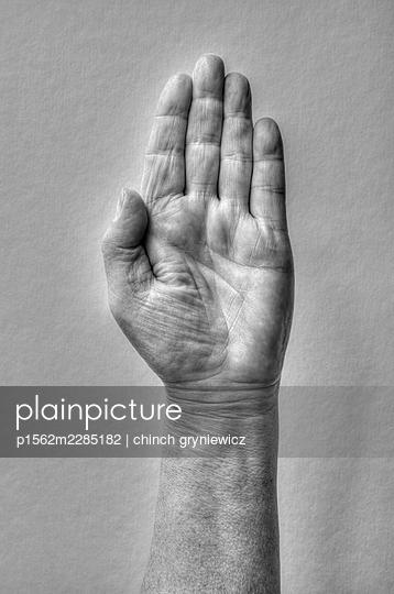 Raised Hand - p1562m2285182 by chinch gryniewicz