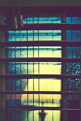 Reflection in Window - p1331m1169255 by Margie Hurwich