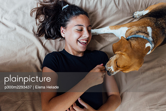 Happy girl playing with Beagle while lying on bed at home - p300m2293437 by Elena Helade
