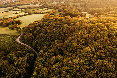 Austria, Lower Austria, Vienna Woods, Biosphere Reserve Vienna Woods, Aerial view of forest in the early morning - p300m2029277 by Epiximages