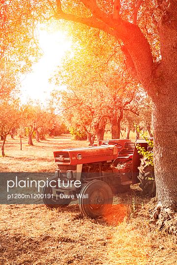 Bauernhof, Italien - p1280m1200191 von Dave Wall