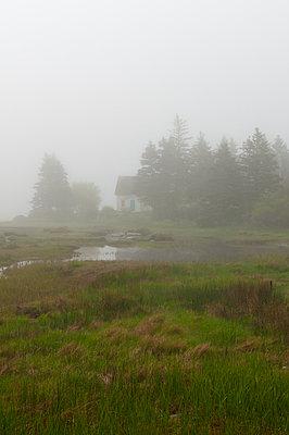 Haus im Nebel - p470m1110902 von Ingrid Michel