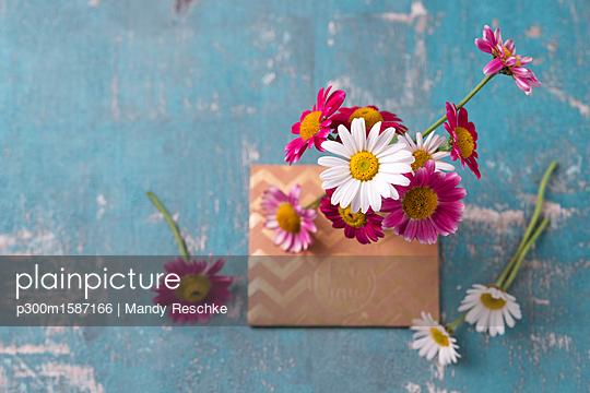 Marguerites and envelope - p300m1587166 von Mandy Reschke