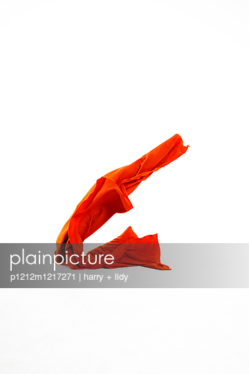 Stoffe Fliegen - p1212m1217271 von harry + lidy