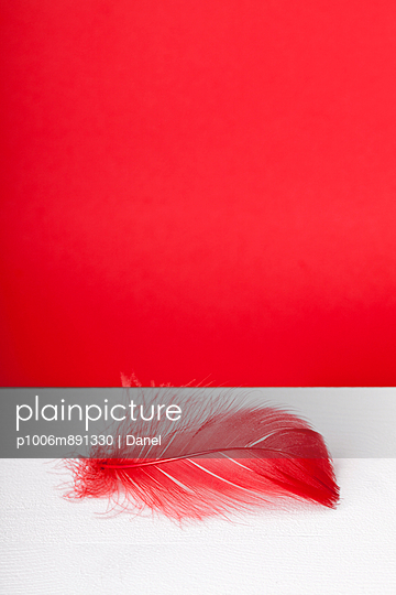 Red feather - p1006m891330 by Danel