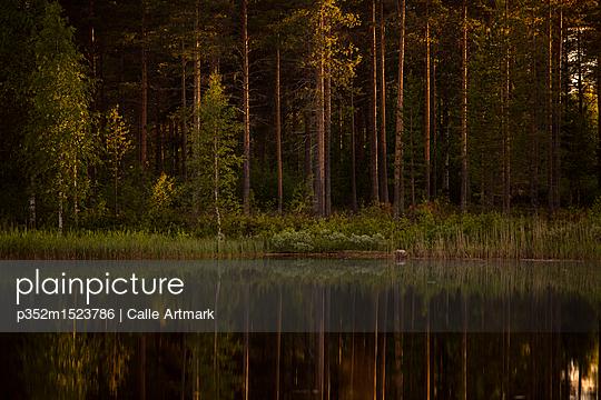 p352m1523786 von Calle Artmark