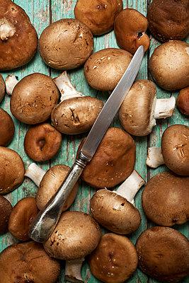 Mushrooms on a wood table - p1166m2094057 by Cavan Images