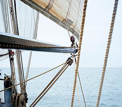 Sailing - p989m953140 by Gine Seitz