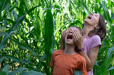 Laughing boy and girl having fun in green cornfield - p1166m2290224 by Cavan Images