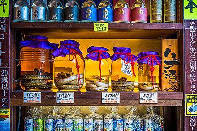 Jars of Habushu, Okinawan awamori-based liquor with a venomous habu snake inside, central Naha, Japan - p1264m1089024f by Peter Lübeck