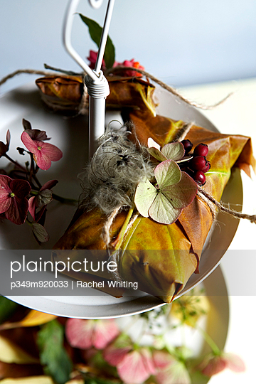 Gift wrapped in autumn leaves;  Isle of Wight;  UK - p349m920033 by Rachel Whiting
