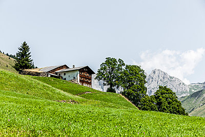 Alpine farming - p248m1058248 by BY