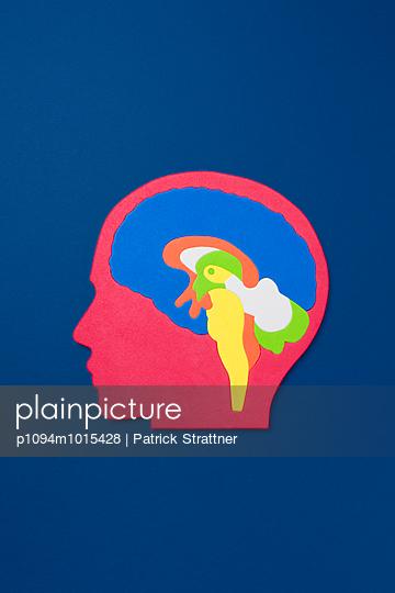 Gehirn - p1094m1015428 von Patrick Strattner