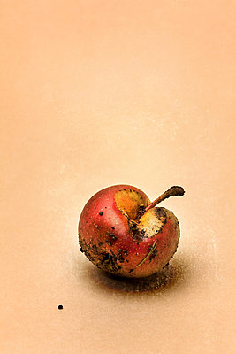 Verfaulter Apfel - p402m721177 von Ramesh Amruth