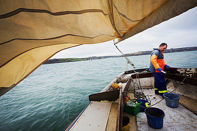 Traditional Sustainable Oyster Fishing. A fisherman on a sailing boat  - p1100m1216017 by Mint Images