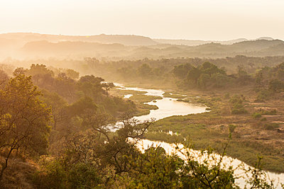 Trees and river in the morning fog, South Africa - p1640m2261128 by Holly & John