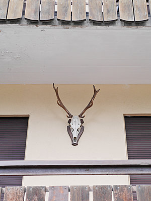 Deer antler as decoration on balcony - p318m1170032 by Christoph Eberle