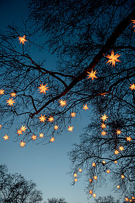 Chain of lights - p949m951777 by Frauke Schumann