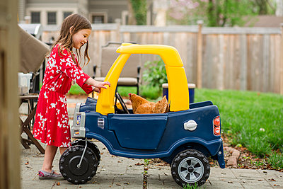 Side view of girl looking at chicken in toy car - p1166m2000583 by Cavan Images