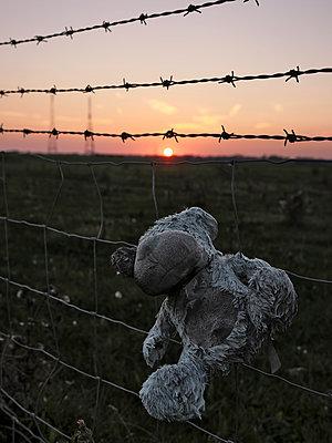 Teddybär hat sich im Zaun verfangen - p1383m2026473 von Wolfgang Steiner
