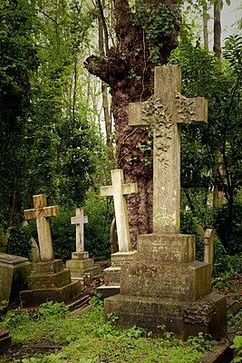 Friedhof - p382m982568 von Anna Matzen