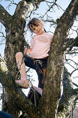 Mädchen auf einem Baum - p8670186 von Thomas Degen