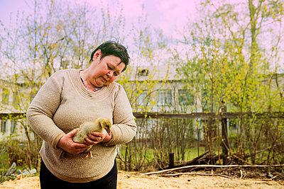 Caucasian farmer holding duckling on farm - p555m1412104 by Aleksander Rubtsov