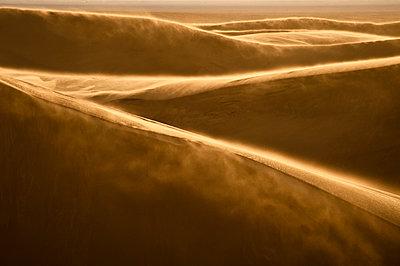 Sand blowing over sand dunes. Backlit.  Great Sand Dunes National Park, Alamosa, Colorado, United States. - p343m964363 by Dan Ballard
