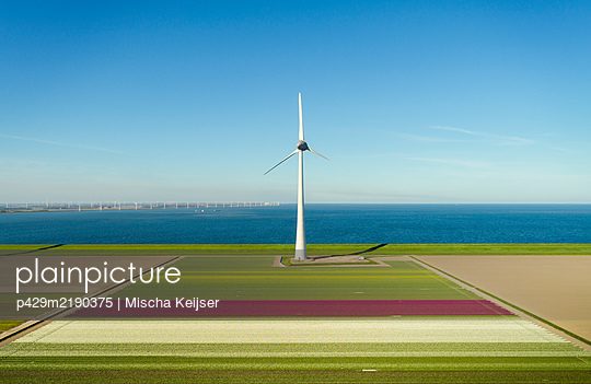 Early morning view of wind turbines and spring fields in coastal area of The Netherlands. - p429m2190375 by Mischa Keijser