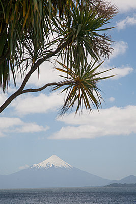 Volcano Osorno on the shore of Lake Llanquihue - p1038m2087580 by BlueHouseProject