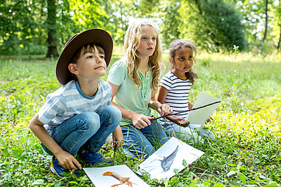 School children learning to distinguish animal species in forest - p300m2160753 von Fotoagentur WESTEND61