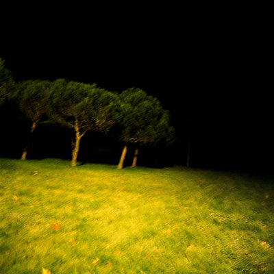 Field at night, Vendée - p1049m924776 by Camille Hervouet