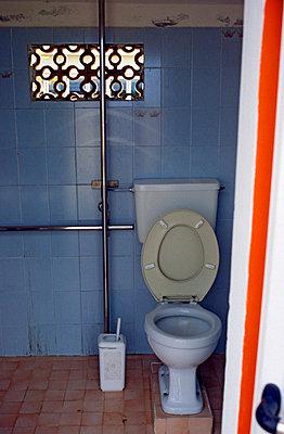 Toilet paper - p26813223 by Katarzyna Zommer