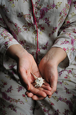 Shell in Hands - p1072m829396 by Neville Mountford-Hoare