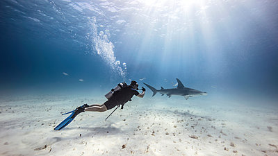 Underwater view of male diver watching shark near seabed - p429m1407769 by Ken Kiefer 2
