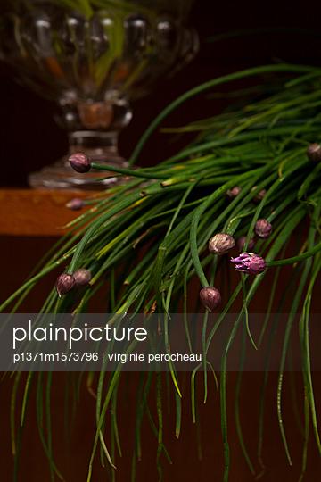 p1371m1573796 von virginie perocheau