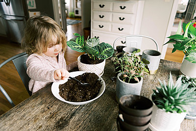 Toddler girl helping with re-potting plants and propagation. - p1166m2152339 by Cavan Images