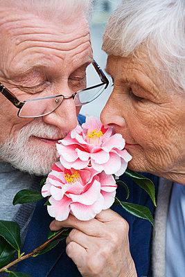 An elderly couple with a flower Stockholm Sweden. - p31217154f by Plattform