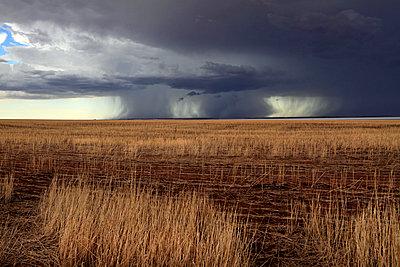 Storm over Farmland and Yarra Yarra Lake - p979m909959 von Mayall